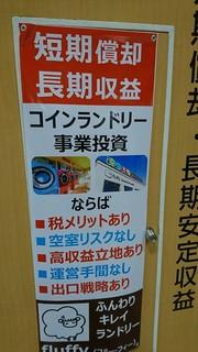 DSC_0570.JPG